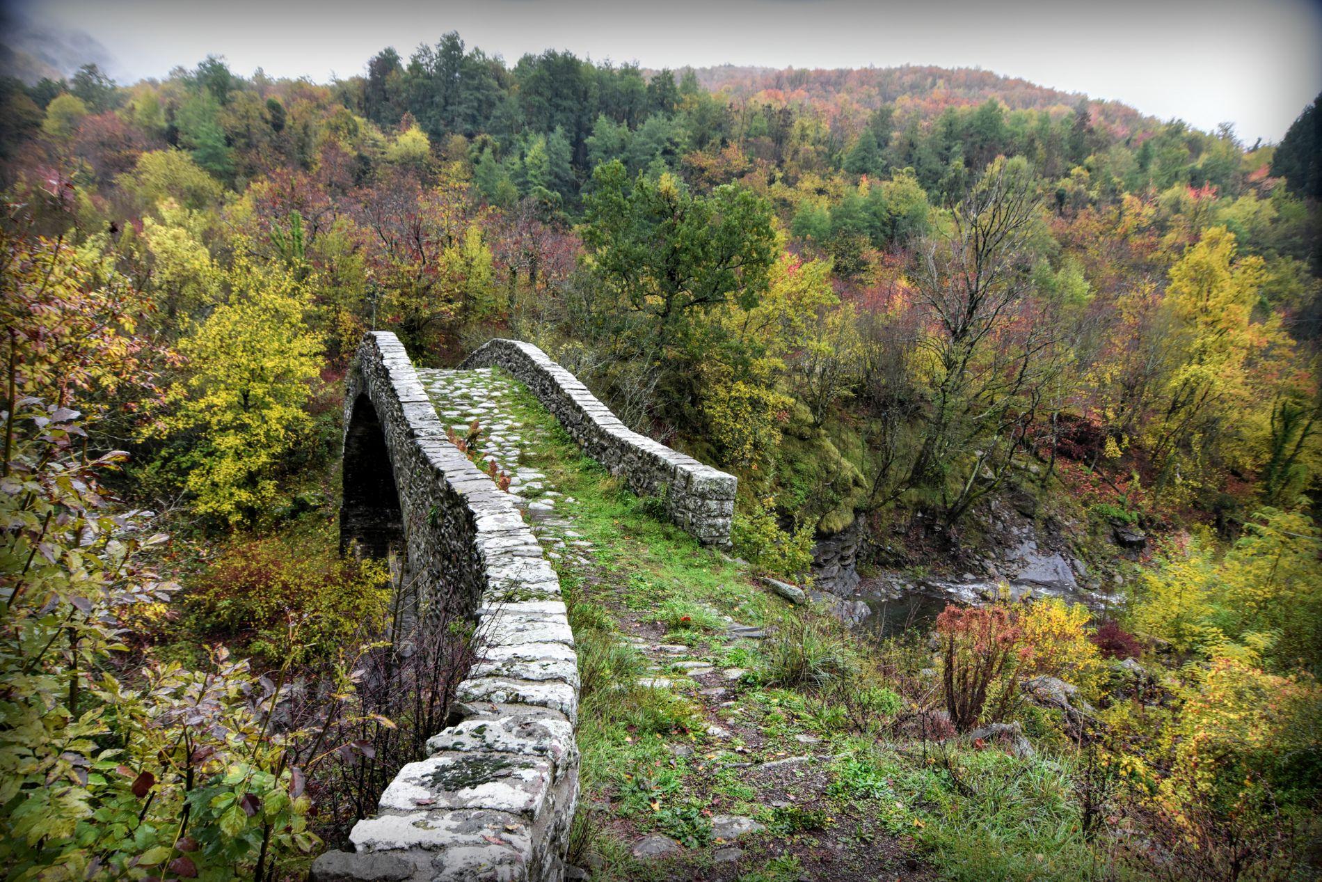 Groppodalosio bridge